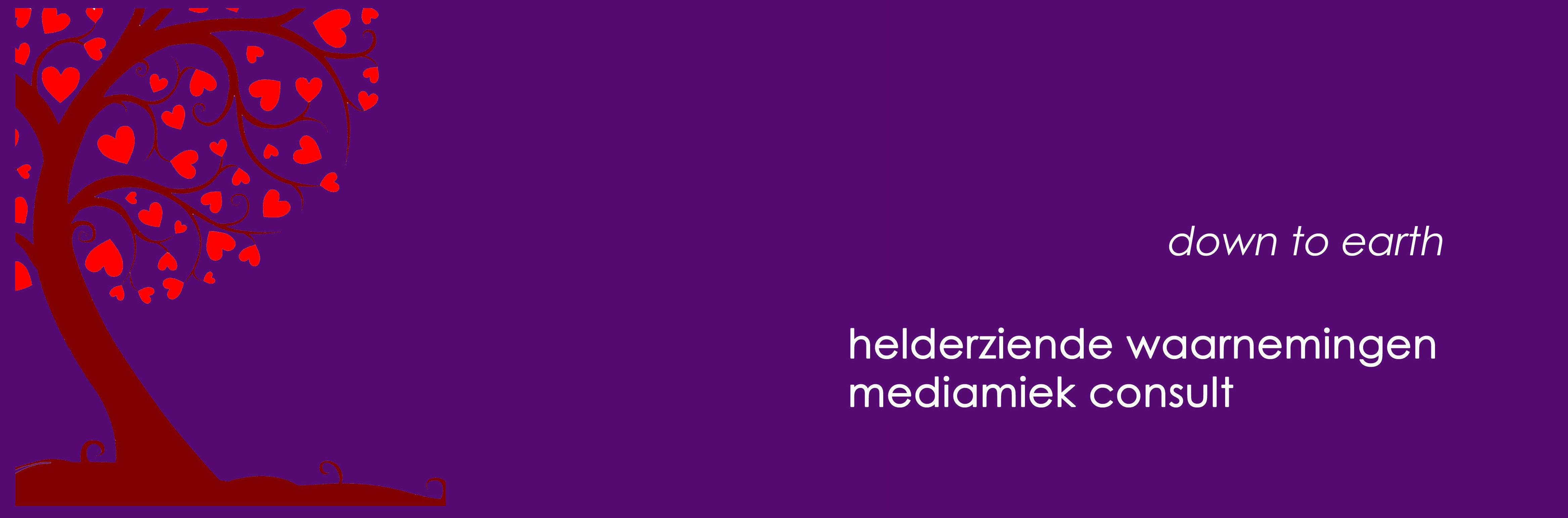 medium wendy van der ven